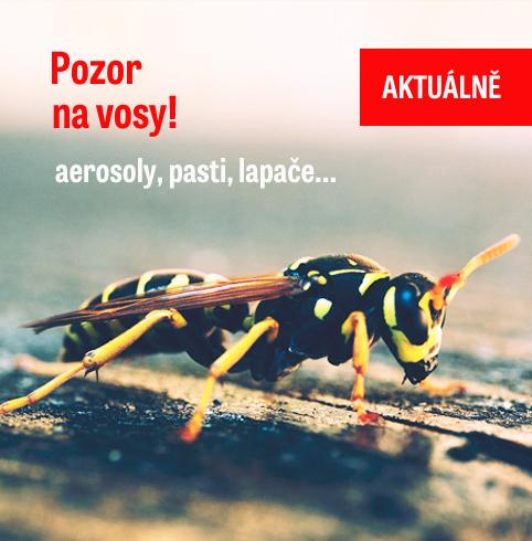 Pozor na vosy!