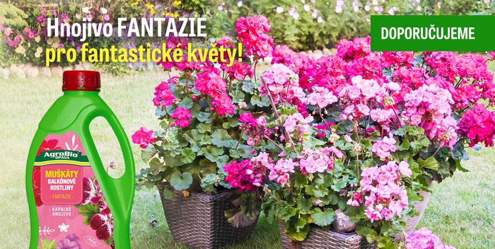 Hnojivo pro muškáty - Fantazie