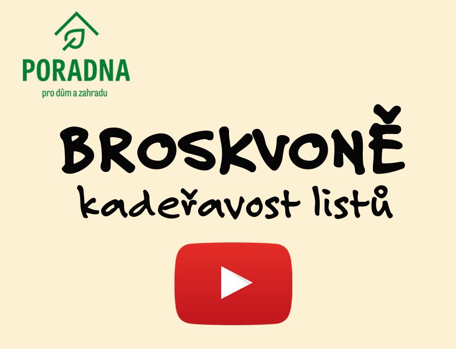 PORADNA PRO DŮM A ZAHRADU - Broskvoně - kadeřavost listů