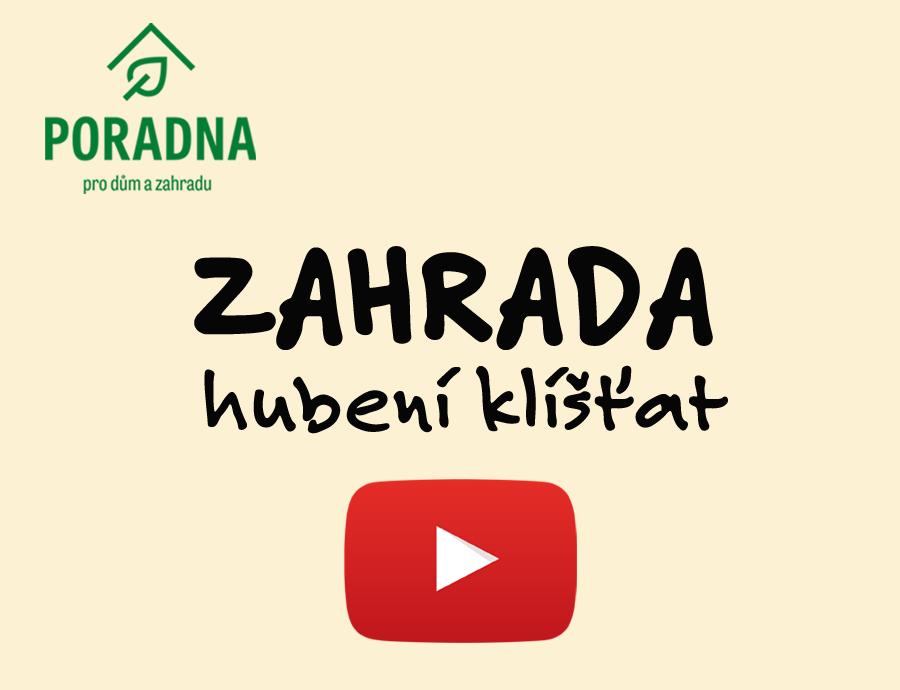 PORADNA PRO DŮM A ZAHRADU - hubení klíšťat