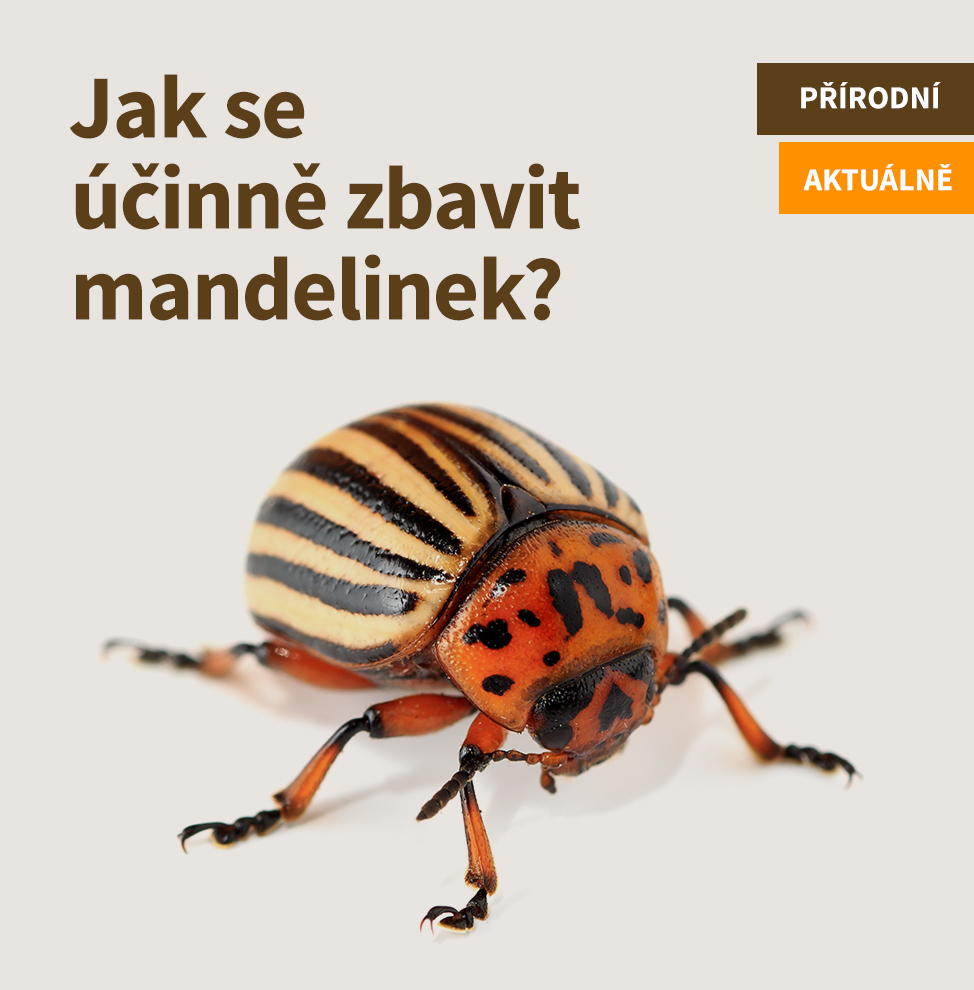 Hubení mandelinek_hlavní banner