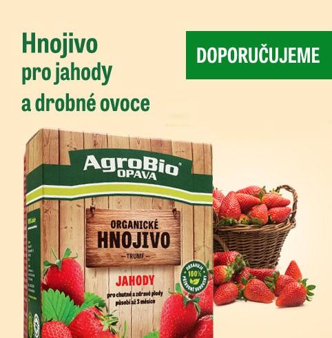 Výživa jahod - hnojivo