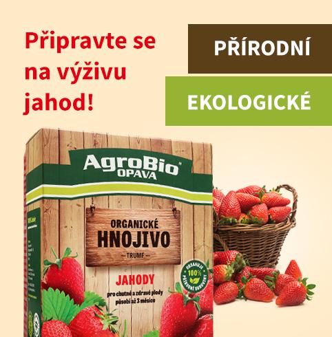 Výživa jahod - Hnojivo Trumf - čtverec