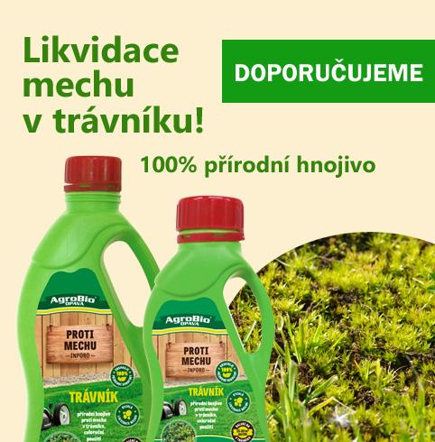 likvidace mechů z trávníku