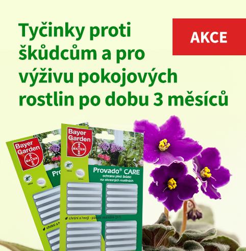 Akce - Provado Care