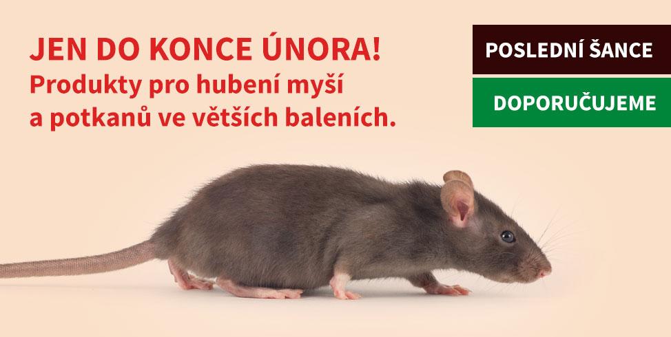 Poslední šance - hubení myší