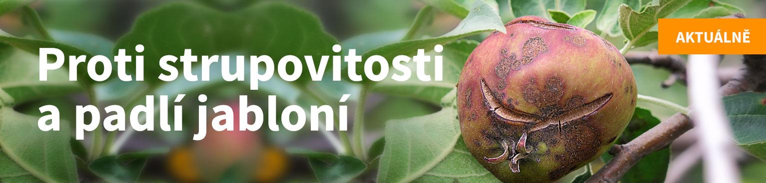 Proti strupovitosti a padlí jabloní