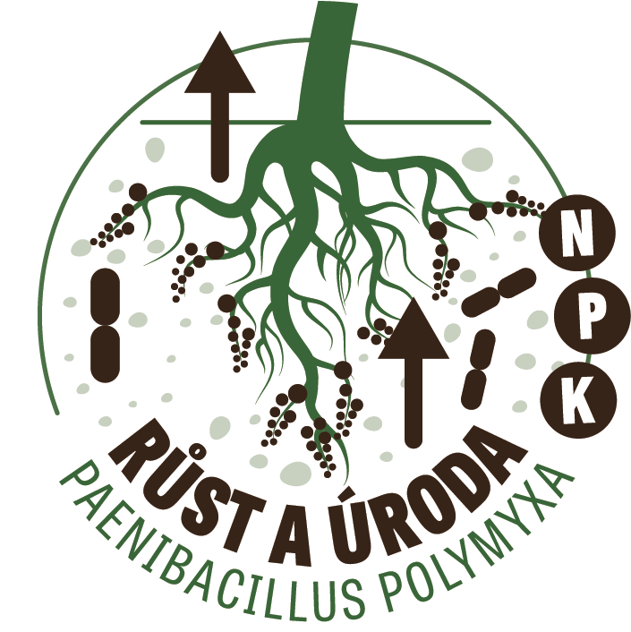 Bakterie pro růst zeleniny
