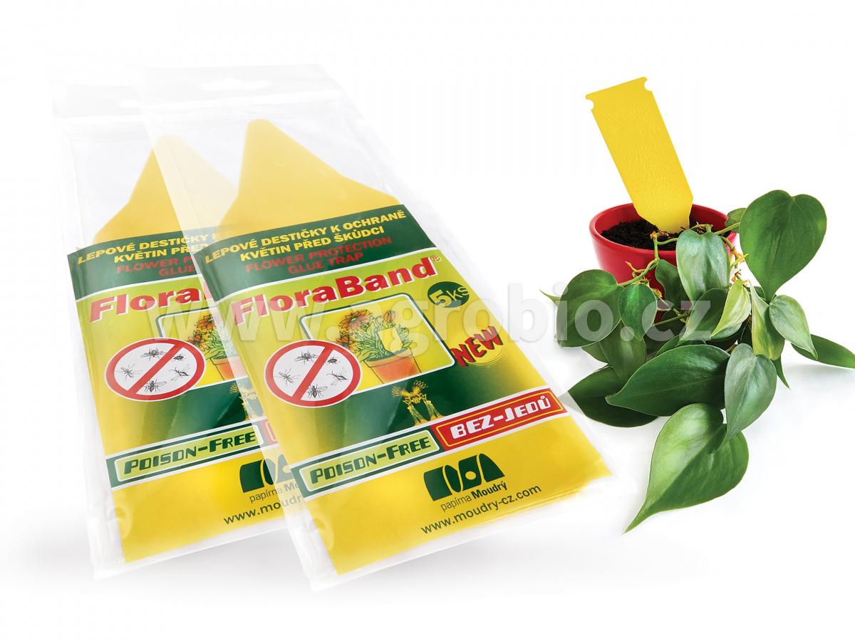 PM Lepové šipky žluté Floraband