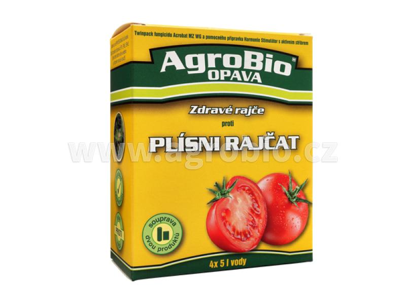 Zdravé rajče proti plísni rajčat