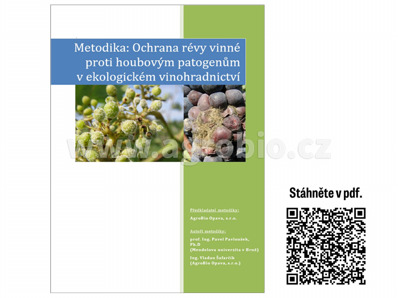 Réva - Metodika ošetření bylinnými extrakty