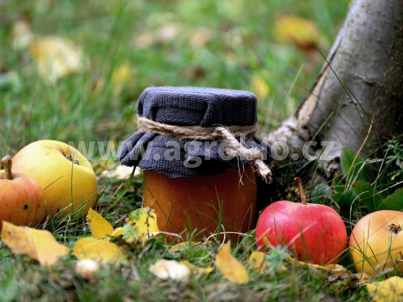 podzimní výživa