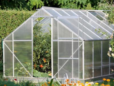 Výživa zeleniny ve skleníku