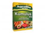 Kumulus WG 2x100g